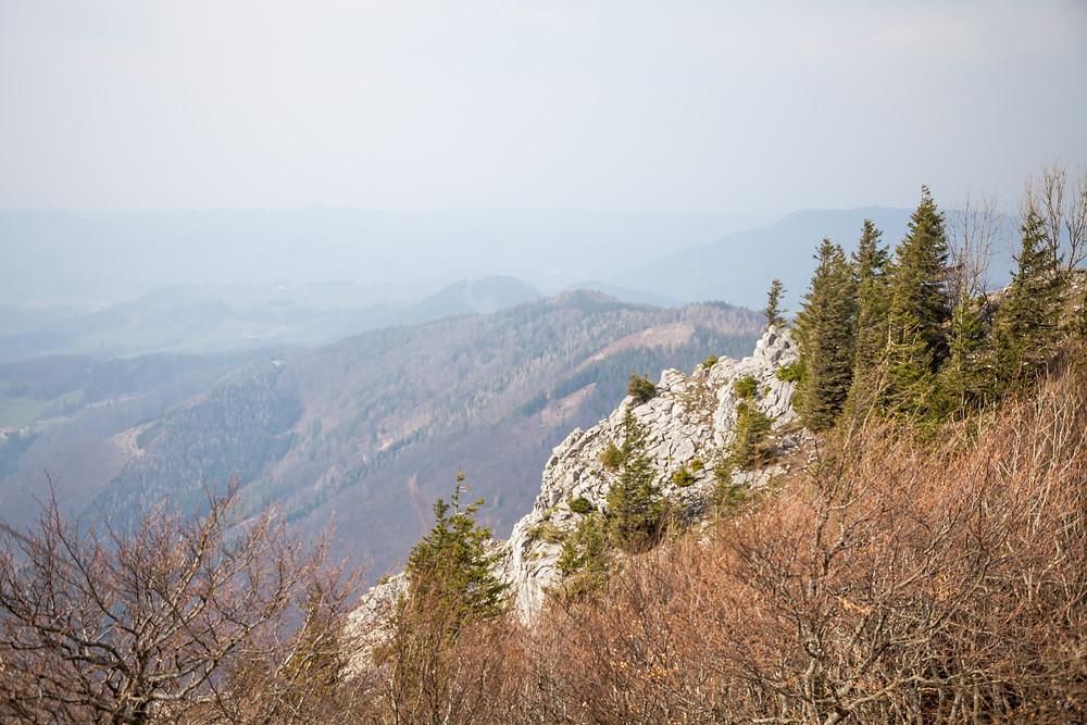 Hohenstein, Pielachtal, Mostviertel, Niederösterreich, Wandern, Wanderung, Bergwandern