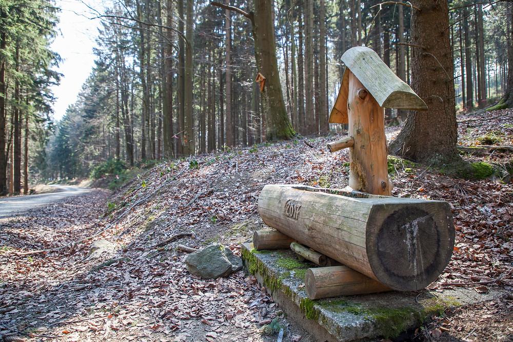 Brunnen, Waldbrunnen, Wandern, Wanderung, Waldviertel, Peilstein, Niederösterreich