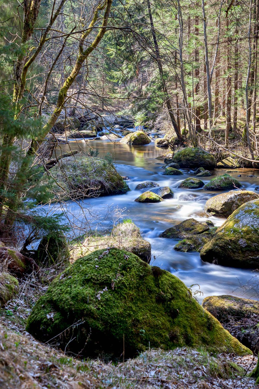 Kamp, Kamptal, Rapottenstein, Kleiner Kamp, Waldviertel, Niederösterreich, Wandern, Wanderung, Flusslandschaft