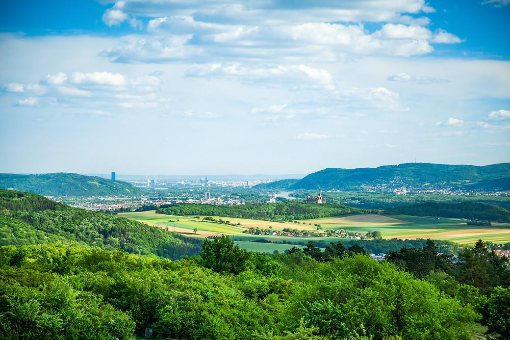 Michelberg, Goldenes Bründl, Weinviertel, Niederösterreich, Wandern, Wandertipp, Ausflug, Burg Kreuzenstein, Wien, Korneuburg, Klosterneuburg