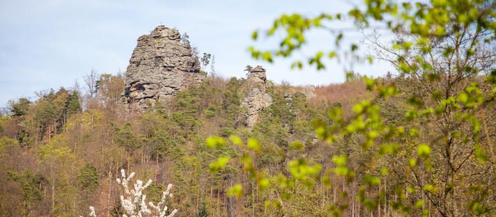 Wandern Mostviertel: rote Wand - hoher Stein im Dunkelsteinerwald in Niederösterreich