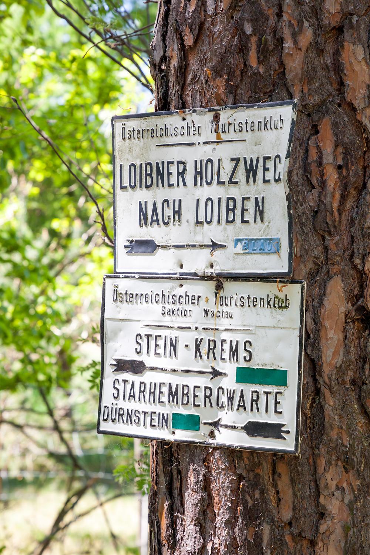 Dürnstein, Wachau, Niederösterreich, Donau, Donautal, Wandern, Ausflug, Wandertipp