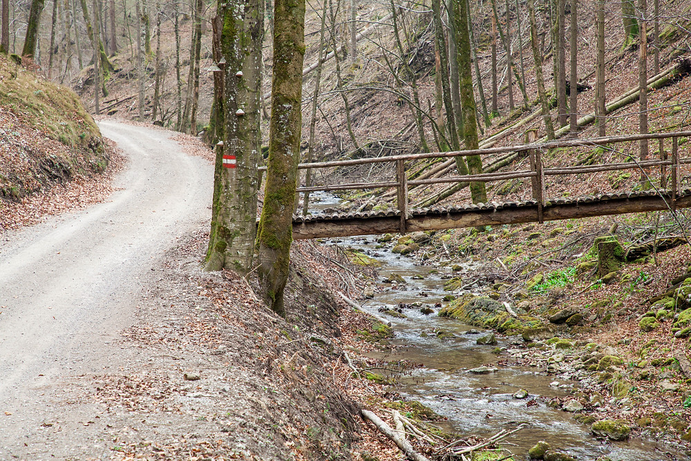 Holzbrücke, Brücke, Bach, Waldweg, Hohenstein, Pielachtal, Mostviertel, Niederösterreich, Wandern, Wanderung, Bergwandern