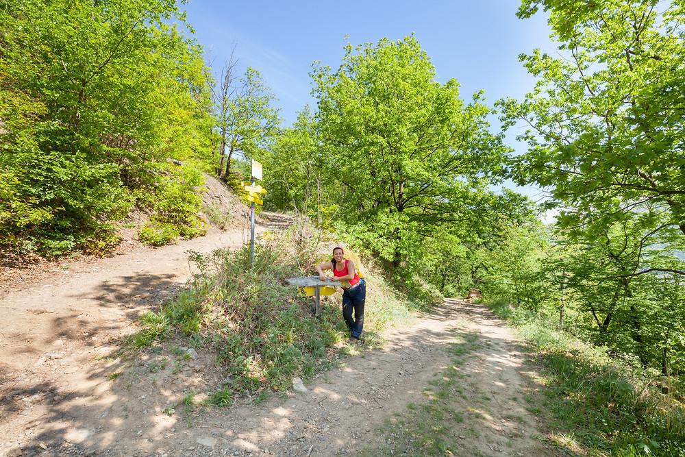 Wanderweg, Wandermarkierung, Wandern, Wandertipp, Ausflug, Wachau, Niederösterreich, Spitz, Sankt Michael