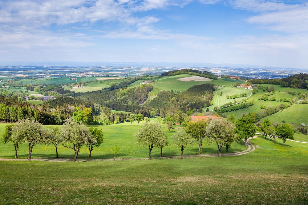 Mostviertel, Niederösterreich, Wandern, Ausflug, Wandertipp