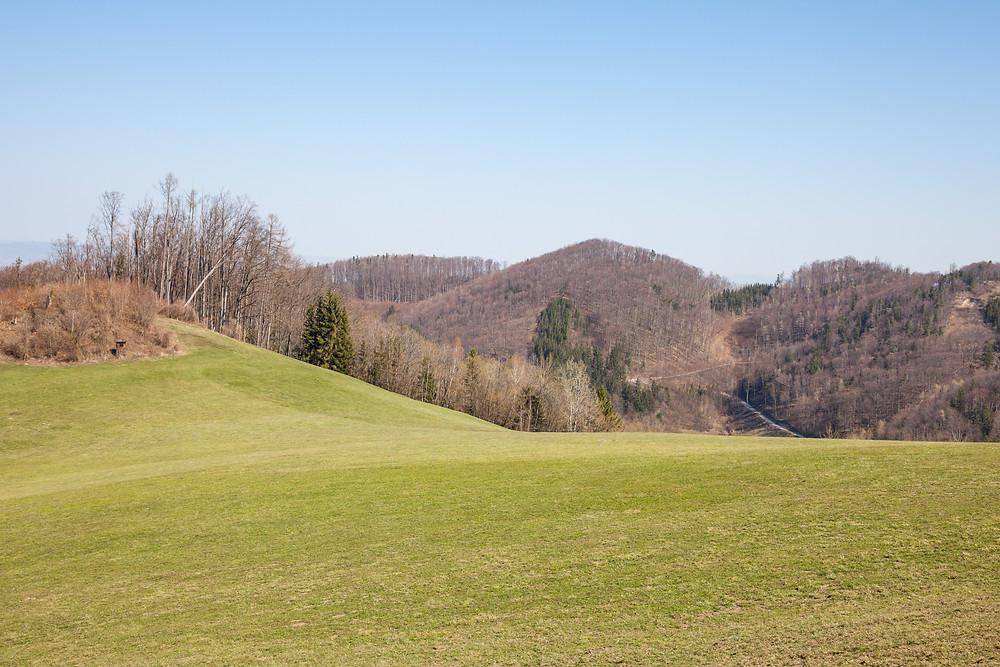 Rabenstein, Pielachtal, Mostviertel, Niederösterreich, Wandern, Wanderung, Almwiese, Alm