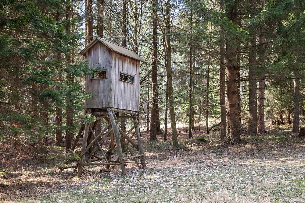 Hochstand, Ansitz, Jäger, Jägerhochstand, Waldviertel, Niederösterreich