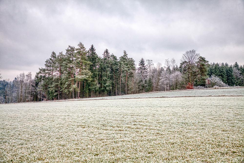 Krumau am Kamp, Waldviertel, Niederösterreich, Wandern, Wanderung, Winterwandern, Steig, Winterwald,