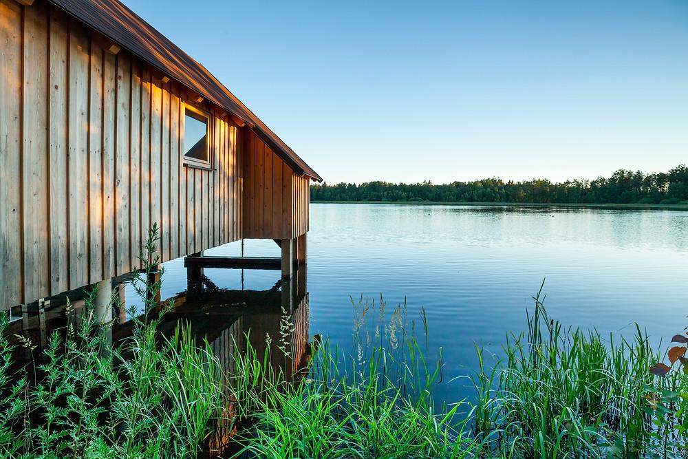 Asangteich, Teich, Karpfenteich, Fischteich, See, Gmünd, Waldviertel, Niederösterreich, Wandern, Wanderung, Ausflug.