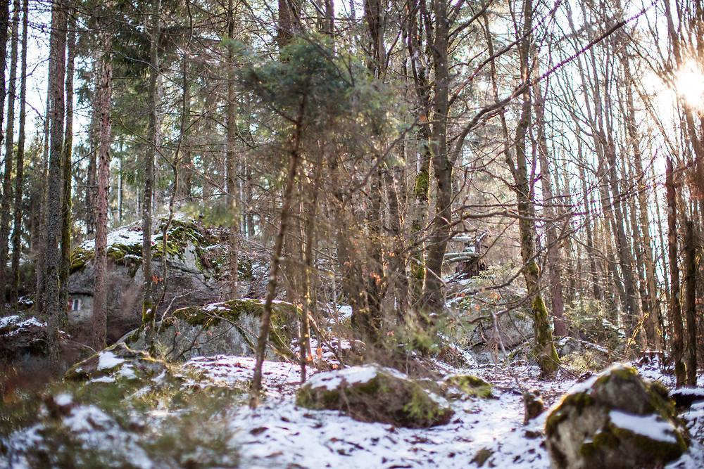 Kaiserstein, Waldviertel, Niederösterreich, Kaiser Franz Josef, Wandern, Wanderung