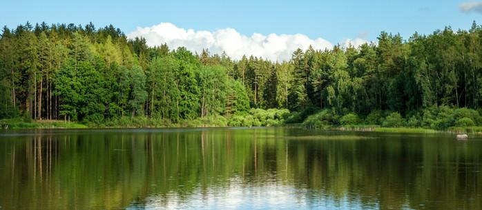 Wandern von Teich zu Teich in Gmünd im Waldviertel