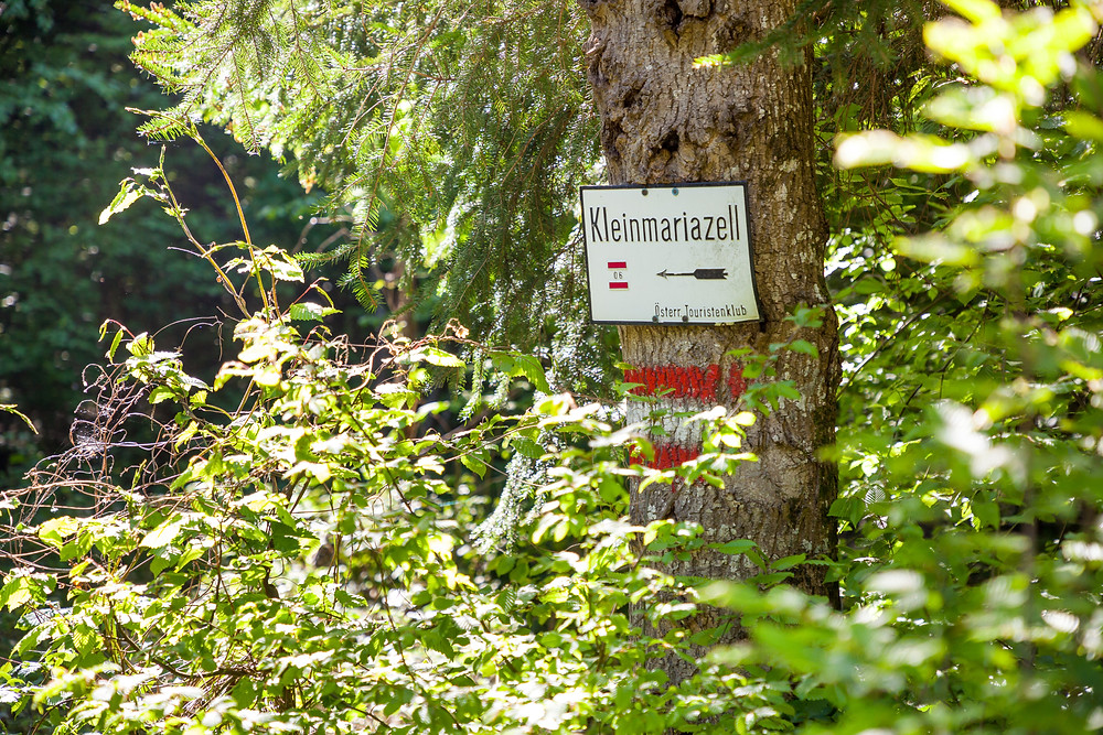 Hafnerberg, Klein Mariazell, Via Sacra, Wallfahrt, Wienerwald, Niederösterreich, 3-Kirchen-Wanderung, Wandern, Ausflug, Wandertipp