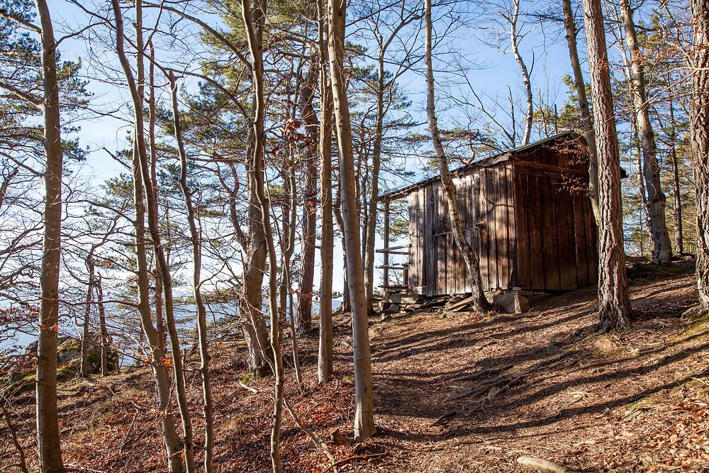 Jagdhütte, Spitz an der Donau, Wachau, Winterwandern, Wanderung, Wandern, Niederösterreich