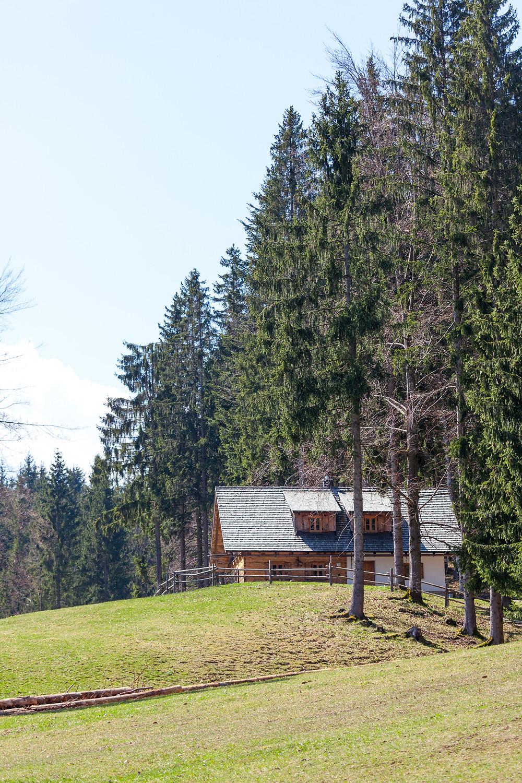 Almhütte, Berghütte, Alm, Weide, Forsteralm, Hirschkogel, Mostviertel, Niederösterreich