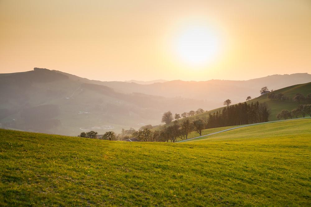 Sonnenuntergang, Landschaft, Mostviertel, Niederösterreich, Hügel, Wiese,