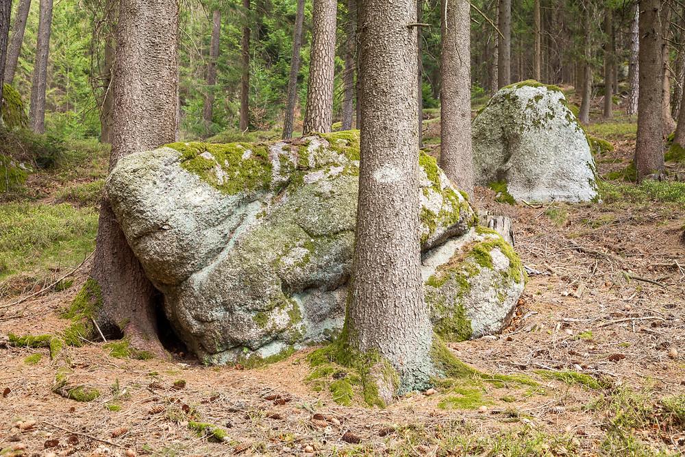 Waldviertel, Niederösterreich, Granit, Felsen, Herzstein, Wandern, Wanderung