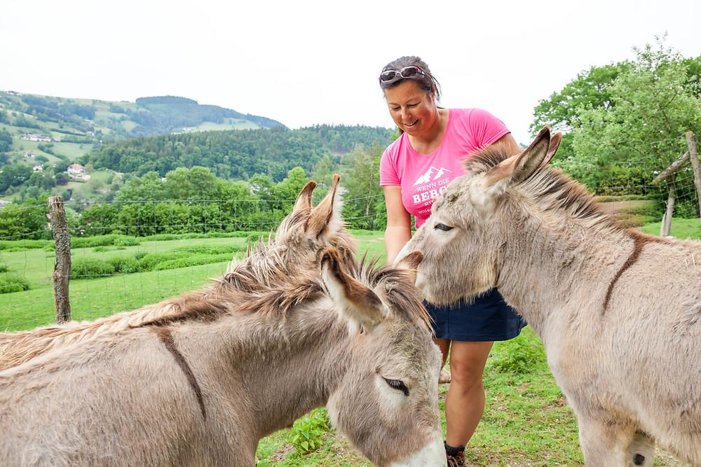 Buchenberg, Naturpark Buchenberg, Tierpark Buchenberg, Naturpark, Tierpark, Mostviertel, Niederösterreich, Ausflug, Naturerlebnis, heimische Wildtiere, Haustiere, Esel, Tiere füttern