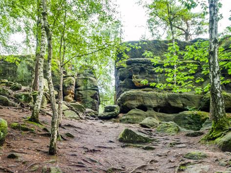 Deutschland - Sächsische Schweiz:  Felsenlabyrinth und Napoleonstein
