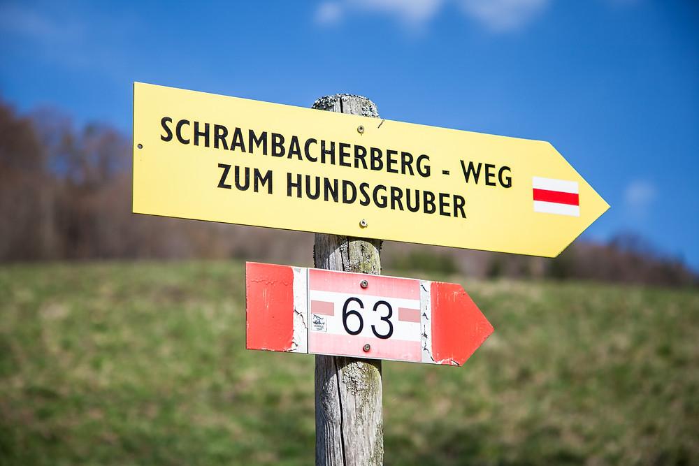 Wanderung, Schneerosenwarte, Lilienfeld, Voralpen, Niederösterreich, Schneerosen, Wandern, Wegweiser