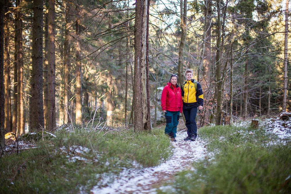 Heidelbeeren, Waldpfad, Waldweg, Peilstein, Kaiserstein, Waldviertel, Niederösterreich, Wandern, Wanderung, Wanderer, Winterwandern