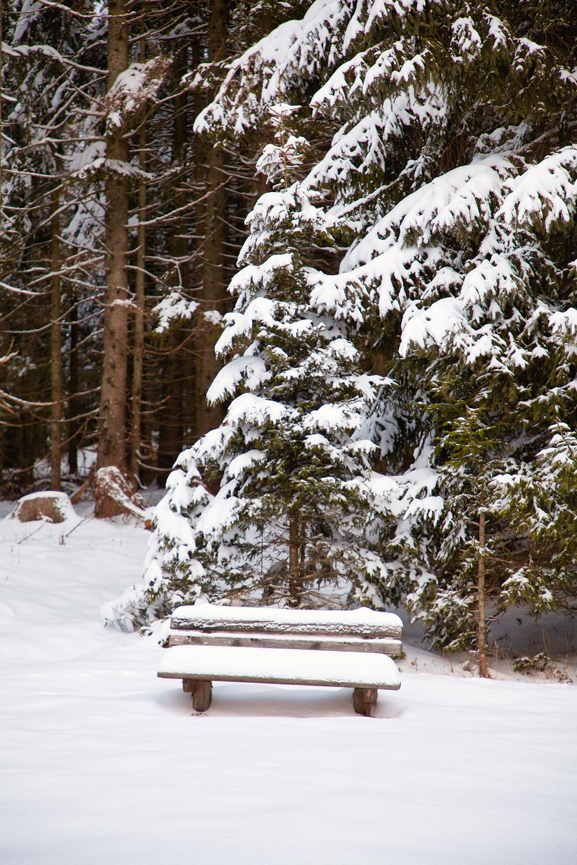 Tirolerkogel, Annaberghaus, Alpen, Wanderung, Wandern, Wanderweg, Winterwandaerung, Winterwandern, Schnee, Winterwald, Bankerl