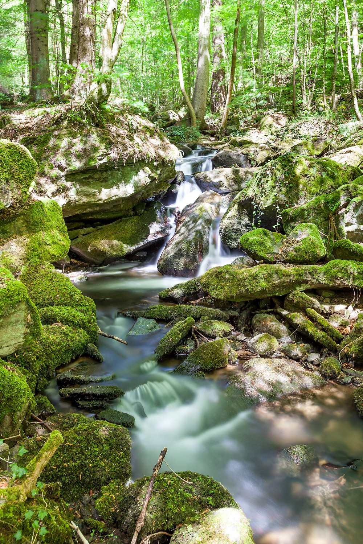 Wasser, Waldbach, Wildbach, Steinbachklamm, Nibelungengau, Waldviertel, Donau, Niederösterreich, Wandern, Ausflug, Wandertipp