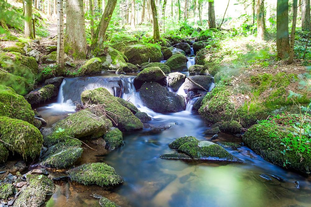 Wanderung, Steinbachklamm, Nibelungengau, Waldviertel, Niederösterreich, Wandern, Ausflug, Wandertipp, Wasserfall, Waldbach