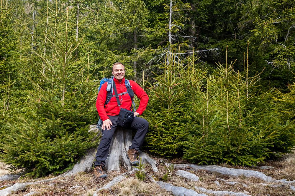 Rast, Wanderer, Baumstumpf, Kiensteinder Öde, Ebenwaldhöhe, Voralpen, Kleinzell, Niederösterreich, Wandern, Wandung, Almen, Alm, Weide
