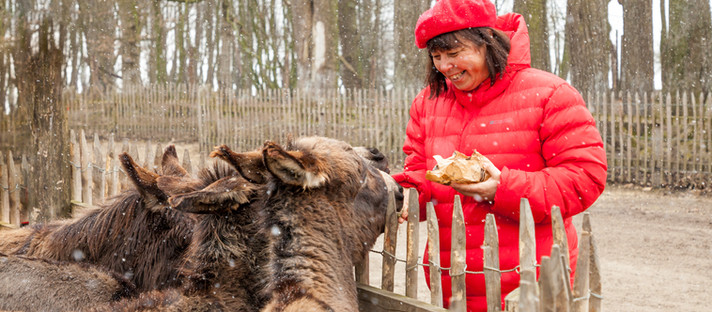 """Ausflug Mostviertel: mit der """"Lizenz zum Füttern"""" im Tierpark Haag in Niederösterreich"""