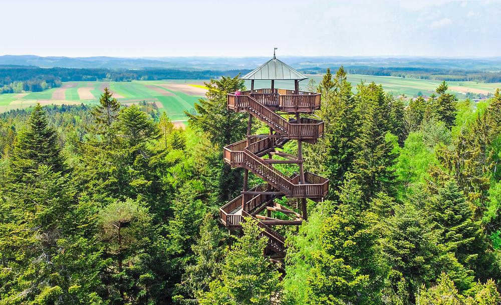 Aubergwarte, Sonnentor, Kräuterwanderweg, Tutgut-Wanderweg, Sprögnitz, Waldviertel, Wald4tel, Niederösterreich, Wandern, Wandertipp, Ausflug