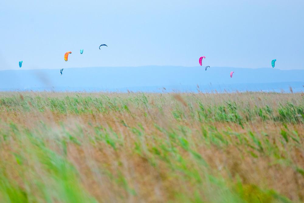 Kiter, Kitesurfer, Kitesurfen, Podersdorf, Neusiedler See, Neusiedlersee, Burgenland, Urlaub, Kurzurlaub, Reise, Radurlaub, Radfahren, Radrunde, Radtour