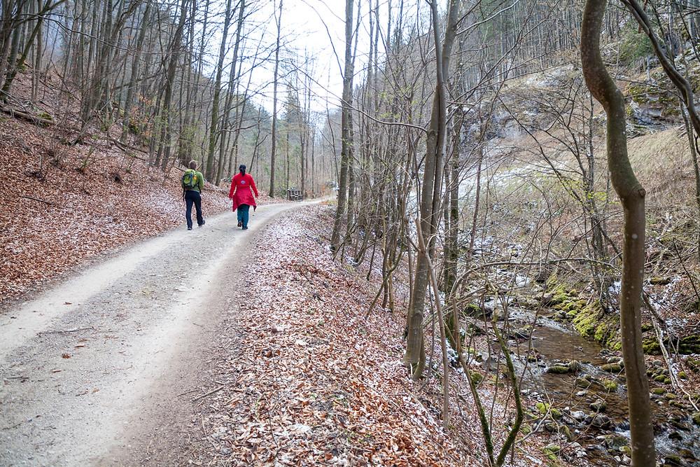 Hinteralm, Kleinzeller Hinteralm, Gutensteiner Alpen, Alpenvorland, Schindeltal, Niederösterreich, Wandern, Wanderung, Bergwandern, Wanderweg