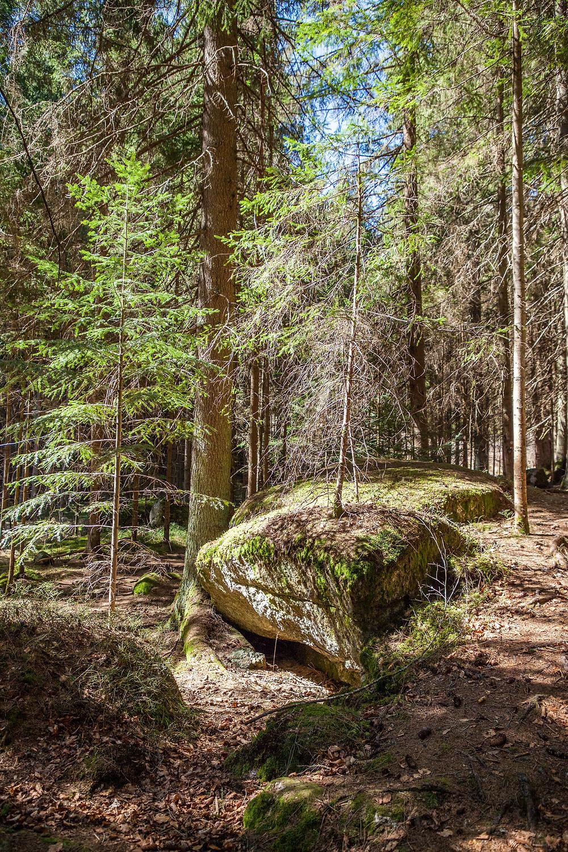 Lohnbachfall, Wanderung, Wandern, Waldviertel, Niederösterreich, Granit, Felsformation