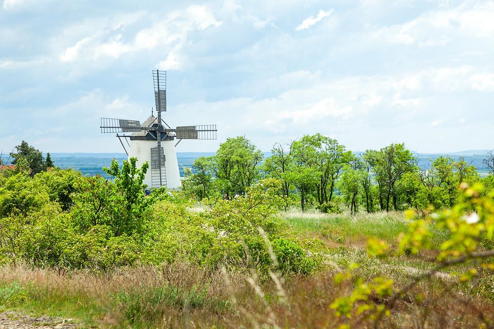 Retzer Windmühle, Windmühle, Retz, Weinviertel, Retzer Land, Wenzelsteg, Wandern, Wanderung, Ausflug, Niederösterreich