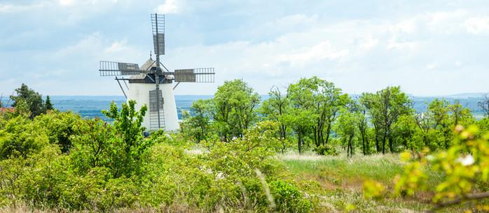 Wanderung Wenzelsteg um die Retzer Windmühle im Weinviertel