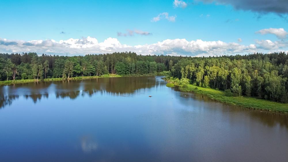 Teich, Karpfenteich, Fischteich, See, Gmünd, Waldviertel, Niederösterreich, Wandern, Wanderung, Ausflug. Drohneuaufnahme, Luftbild