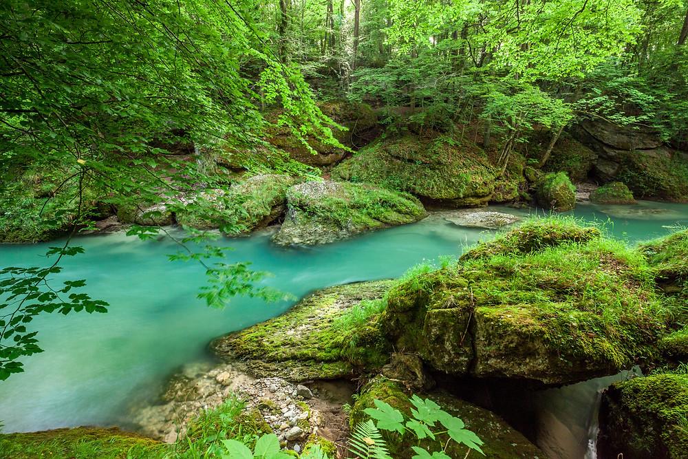 Erlaufschlucht, Erlauf, Purgstall, Mostviertel, Klamm, Schlucht, wandern, Wanderung, Ausflug, Niederösterreich
