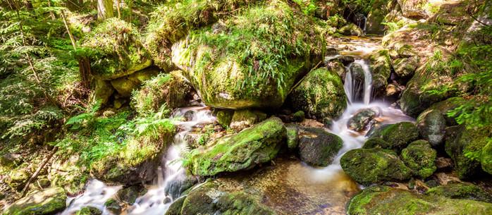 Wandern Waldviertel: Ysperklamm in Niederösterreich