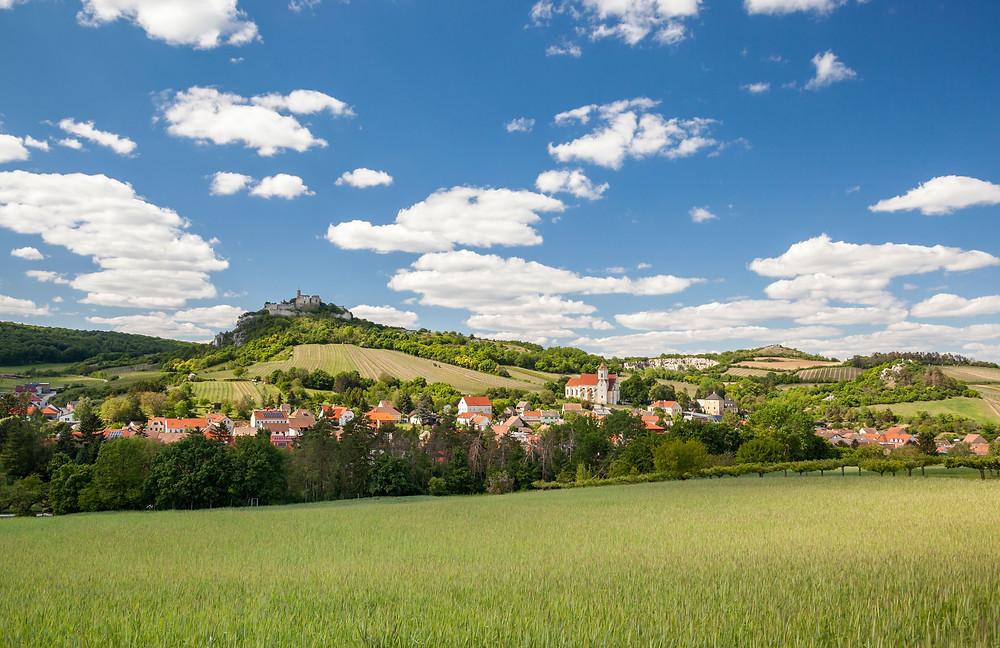 Falkenstein, Ruine Falkenstein, Falkenflug, Weinviertel, Niederösterreich, Wandern, Wandertipp, Ausflug
