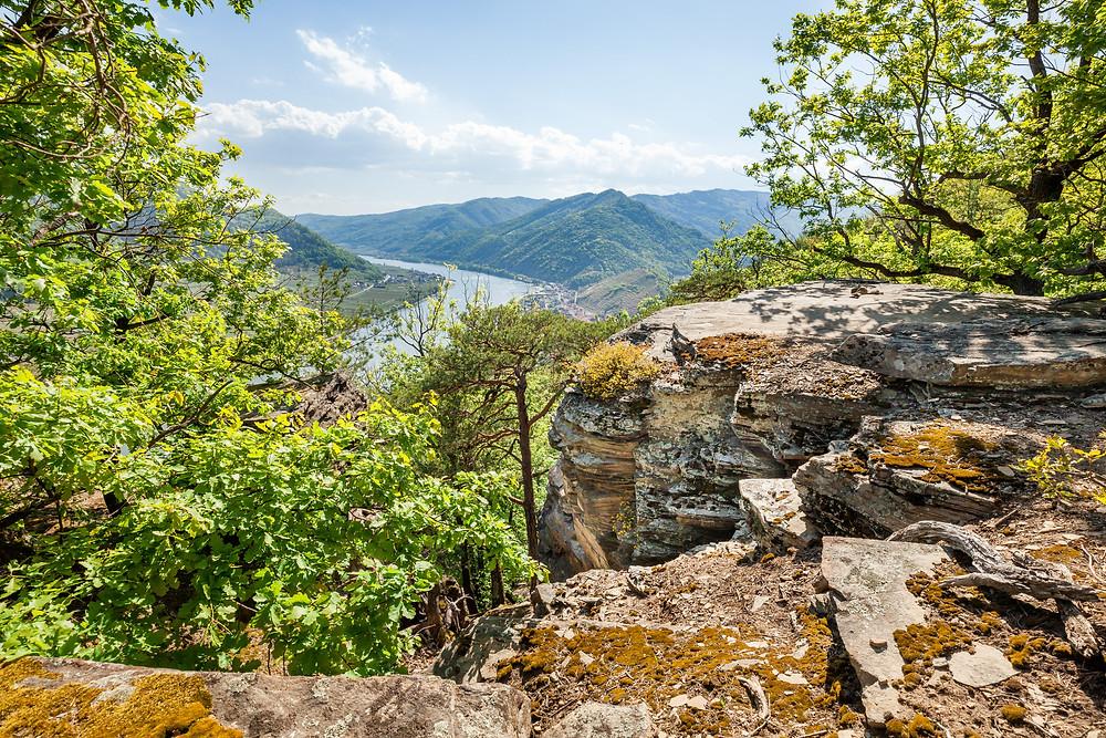 Spitz an der Donau, Sankt Michael, Höhenweg, Wachau, Niederösterreich, Wandern, Wandertipp