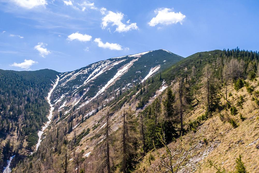 Göller, Mostviertel, Alpen, Niederösterreich, Wandern, Bergtour, Wandertipp, Bergwandern, Gipfel