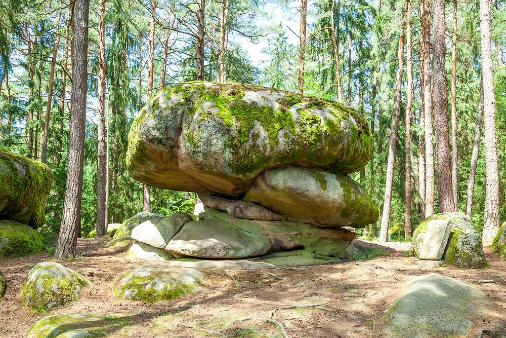 Pilzstein, Pilzstein, Blockheide, Wackelsteine, Granit, Felsformationen, Gmünd, Waldviertel, Niederösterreich, Wandern, Wanderung, Ausflug, Naturpark, Naturdenkmal