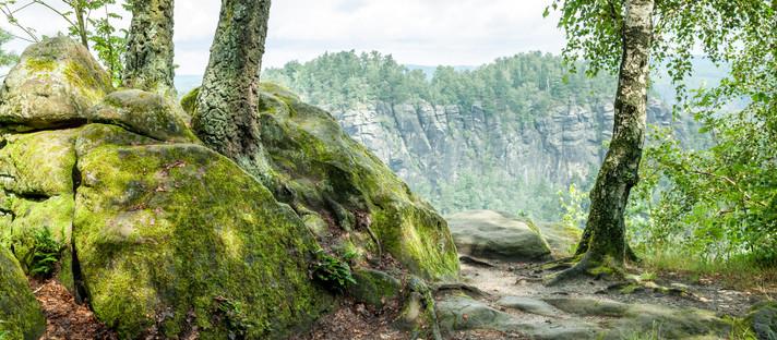 Deutschland - Sächsische Schweiz: Weißig - kleiner Bärenstein - großer Bärenstein
