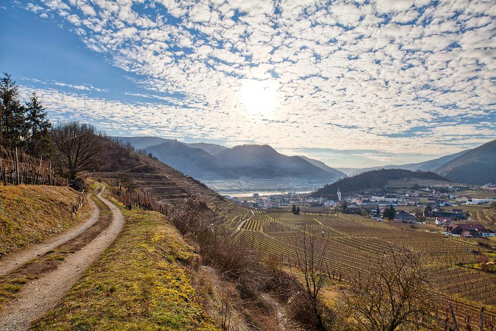Wanderung, Rotes Tor, Spitz an der Donau, Wachau, Niederösterreich, Wandern, Wanderung, Welterbesteig,