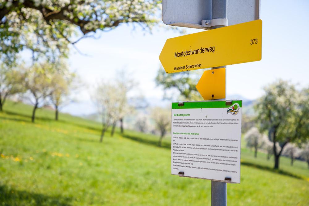 Wandermarkierung, Wanderweg, Mostobstwanderweg. Mostviertel, Mostbirnbaumblüte, Wandern, Ausflug