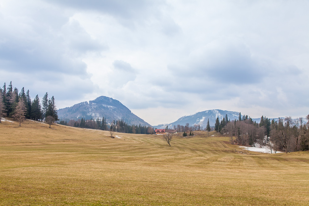 Hochstaff, Reisalpe, Kiensteinder Öde, Ebenwaldhöhe, Voralpen, Kleinzell, Niederösterreich, Wandern, Wandung, Almen, Alm, Weide