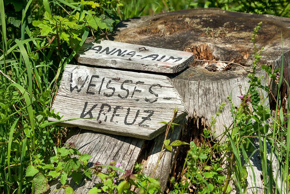 Blumenwiese, Almwiese, Blumen, Wiesenblumen, Gras. Annaberg, Annahm, Hennesteck, wandern, Wanderung, Ausflug, Niederösterreich, Mostviertel, Wegweiser, Weißes Kreuz