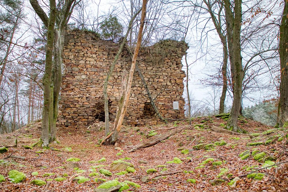 Krumau am Kamp, Waldviertel, Niederösterreich, Wandern, Wanderung, Winterwandern, Steig, Ruine, Burg, Ruine Schwarzenberg, Lost Place