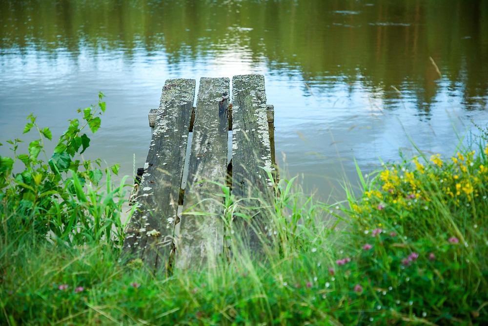 Teich, Karpfenteich, Fischteich, See, Gmünd, Waldviertel, Niederösterreich, Wandern, Wanderung, Ausflug, Steg