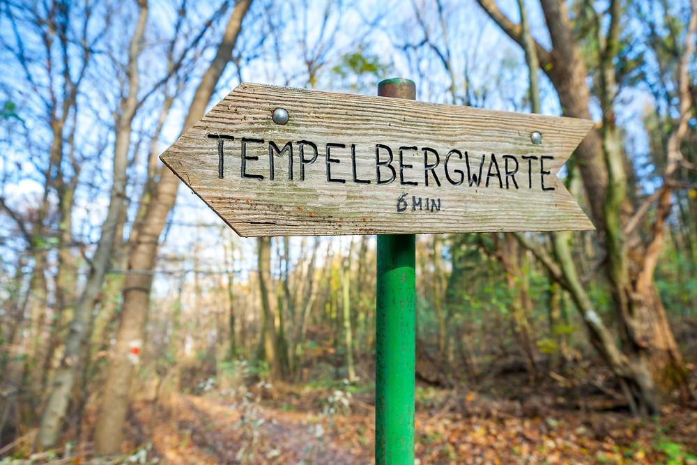 Wienerwald, Niederösterreich, Wandern, Wanderung, Ausflug, Wald, Rundwanderung, Wanderurlaub, Wanderreise, Tempelbergwarte